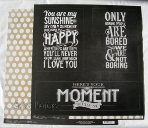 papier scrapbook My Mind's Eye - chalk studio / moments [CS1009]
